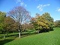 Belmont Park (geograph 3731489).jpg