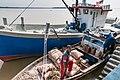 Beluran Sabah Harbour-02.jpg