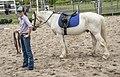 Ben's horse riding instructor-1 (29545636006).jpg