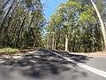 Benandarah NSW 2536, Australia - panoramio (6).jpg