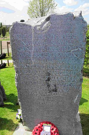 Bevin Boys - One of the memorial stones National Memorial Arboretum