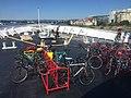 Bikes on MV Coho.jpg