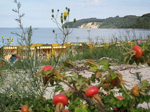 Binz - Binz: View over the dunes, the beach and the Prorer Wiek to Granitzer Ort