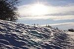 Biosphärenreservat Rhön im Winter 7.jpg
