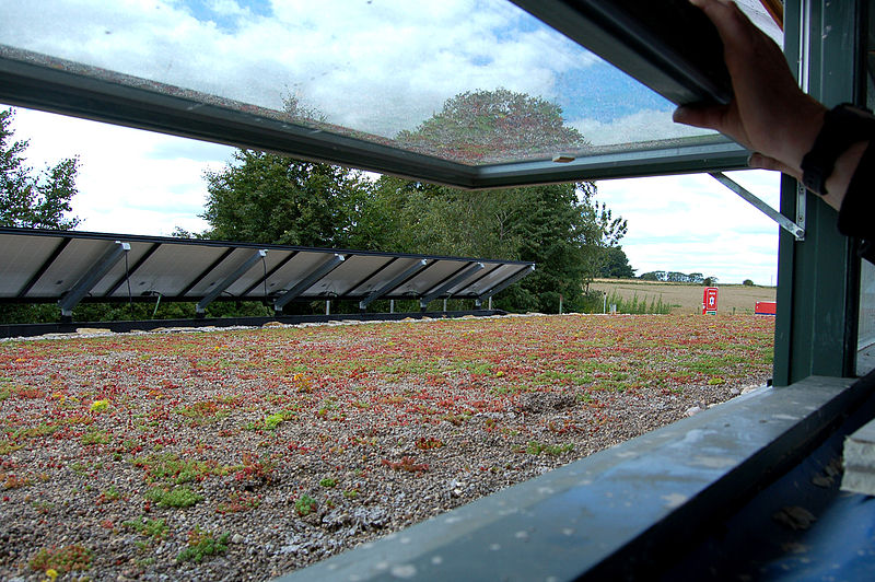 File:Bisley Green Shop roof 2.jpg