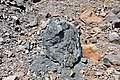 Black smoker rocks (sulfidic wad) (Helen Iron-Formation, Neoarchean, 2696-2749 Ma; Sir James Pit, Eleanor Iron Range, Ontario, Canada) 1 (48069912388).jpg