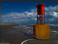 Boca Chica Beach Grounded Buoy - Flickr - pinemikey.jpg