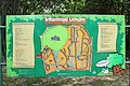 Bogor Botanical Gardens - panoramio (1).jpg