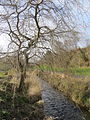 Braidburn Valley Park, Edinburgh, Feb 2014 (12697809893).jpg