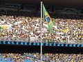 Brazilian flag at Rio 2007.jpg
