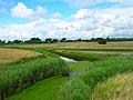 Bremere Rife - geograph.org.uk - 501468.jpg