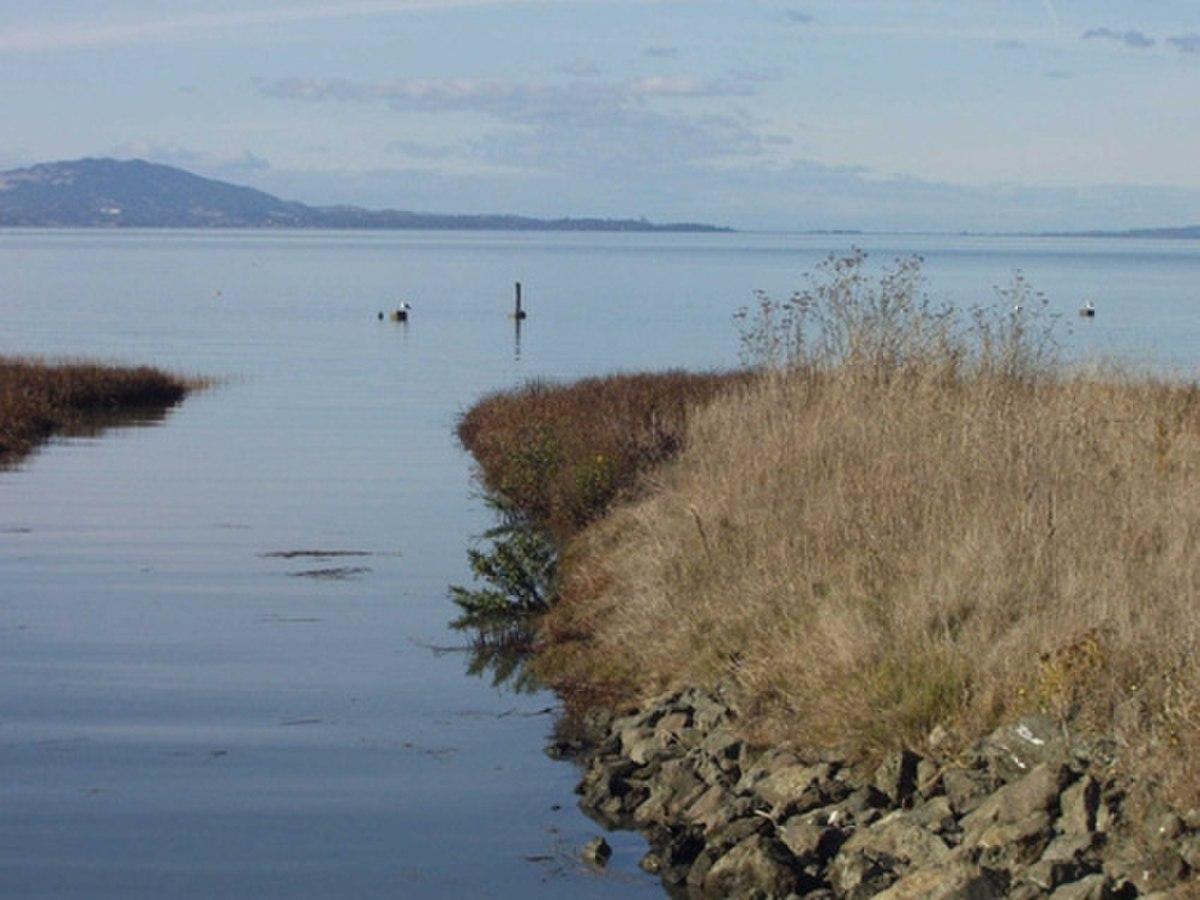 Point Pinole Regional Shoreline - Wikipedia