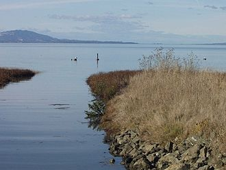 Point Pinole Regional Shoreline - Breuner Marsh — San Pablo Bay and shoreline vegetation