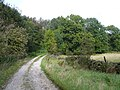 Bridleway leading to Harewood Road - geograph.org.uk - 555379.jpg