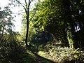 Bridleway near Bowden Farm - geograph.org.uk - 579591.jpg