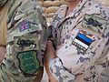 British and Estonian Soldiers in Afghanistan MOD 45154604.jpg