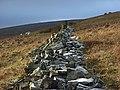 Broken wall, Great Heaplaw - geograph.org.uk - 298043.jpg