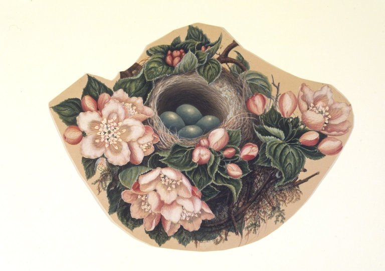 Brooklyn Museum - Bird's Nest - H. Lynde