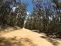 Brooman NSW 2538, Australia - panoramio (114).jpg