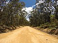 Brooman NSW 2538, Australia - panoramio (133).jpg