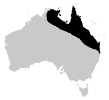 A map of Australia with the cane toad's distribution highlighted. The area follows the north-eastern coast of Australia, ranging from the Northern Territory through to the top end of New South Wales.