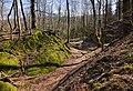 Burgruine-Hattstein-Halsgraben-JR-E-3748-2020-04-02.jpg