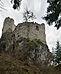 Burgruine Hauenstein in Seis von Norden.jpg