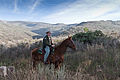 "California State Park Ranger ""Jeff"" Jeffrey Sears and his 21-year old quarter horse named Peter.jpg"
