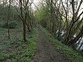 Canal towpath, Buckland Hollow - geograph.org.uk - 1231520.jpg