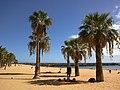 Canaries Tenerife Playa Teresitas 08092015 - panoramio (1).jpg