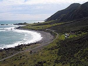 Palliser Bay - A typical coastline in Palliser Bay.