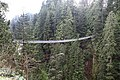 Capilano Suspension Bridge 2012 Winter (6846074424).jpg