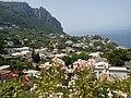 Capri , Naples , Campania , Italy - panoramio (14).jpg