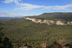 Central Queensland - Carnarvon Gorge from Boolimba Bluff, 2010