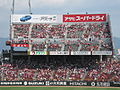 Carp Cheering Section 2009 (3894076021).jpg