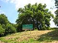 Cartello Parco archeologico del Tusculum.JPG