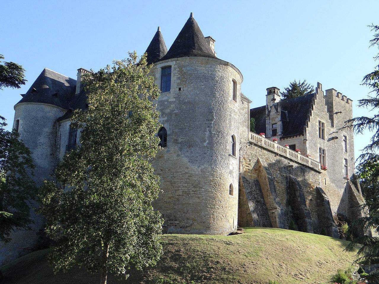 Image illustrative de l'article Château de Fayrac
