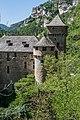 Castle La Caze in Laval-du-Tarn 06.jpg