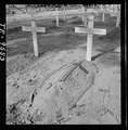 Cemetery for American dead at Bougainville - NARA - 520985.tif