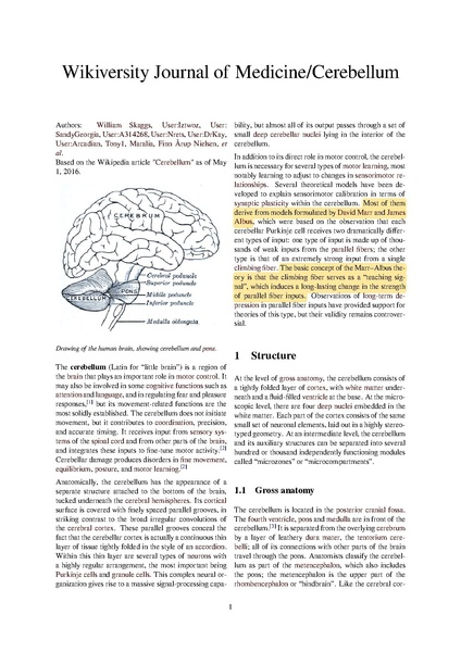 File:Cerebellum article with peer review highlights.pdf