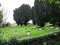 Churchyard, St Andrews Church - geograph.org.uk - 1014003.jpg