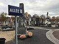 Cimetière de Villefranche-sur-Saône (Rhône, France) - novembre 2017 - 6.JPG