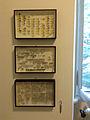 Collezione di coleotteri Museo delle Grigne di Esino Lario 8.jpg