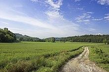 Le colline moreniche tra Sona e Sommacampagna