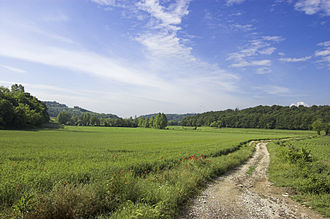 Sommacampagna - Hills between Sona and Sommacampagna.