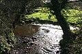 Colyton, stream near Bolshayne - geograph.org.uk - 350700.jpg