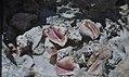 Conch shell dump. Little San Salvadore. (38840252582).jpg