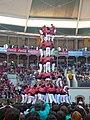 Concurs de Castells 2008 P1220466.JPG