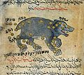 Constellations of Ursa Major, detail, from Wellcome L0030691.jpg
