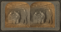 Conveyer line for carrying bird's-eye coal to bin, Scranton, Pa., U.S.A, from Robert N. Dennis collection of stereoscopic views 2.png